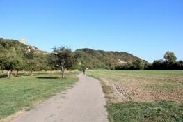 Im Neckartal bei Heinsheim