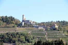 Burg Hornberg bei Neckarzimmern