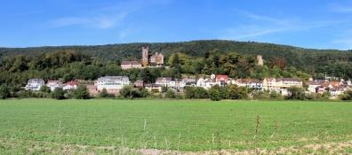 Burgen von Neckarsteinach