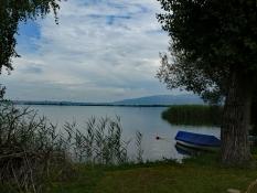 Bodensee bei Fussach