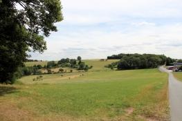 Blick zurück Richtung Rothenberg