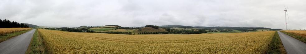 Zwischen Brilon und Altenbüren