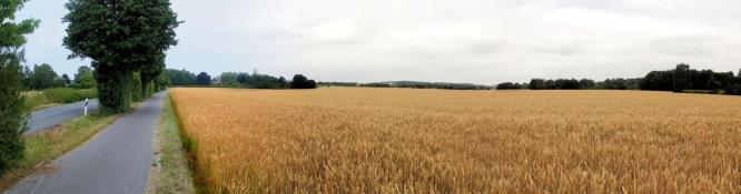 Zwischen Fröndenberg und Langschede