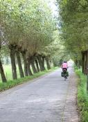 Near Vinderhoute