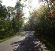 Vidunderlig stille vej på Wisla-landtangen/Wonderful quiet road on the Vistula spit.