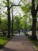 Gode cykelstier også mellem Gdańsk og Gdynia/Fine bike roads also between Gdańsk and Gdynia