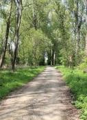 Leineradweg zwischen Gronau und Elze