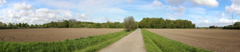 Landscape near Velber