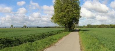Landscape west of Lenthe