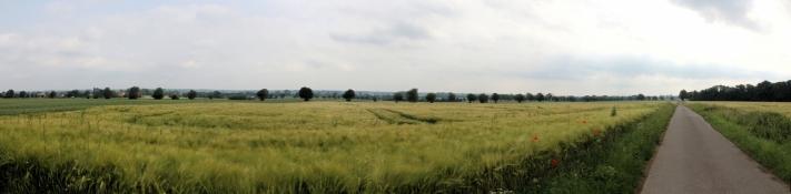 Landschaft bei Griepshop