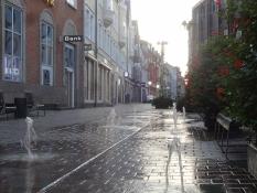 Springvand i gaden i Viborgs centrum/A fountain in a street of Viborg town centre