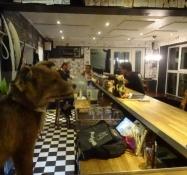 Stille aften i Ølluminatis bar/Quiet evening at the Oelluminati bar