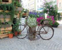 Cham, Blumenschmuck am Marktplatz