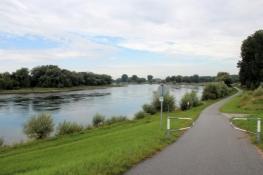 Am Donauradweg hinter Hofkirchen