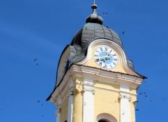 Schwalben umkreisen den Staubinger Kirchturm