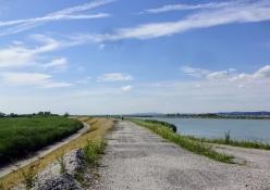 Der Rhein fließt in den Bodensee durch einen Kanal, der mit Dämmen verlängert ist