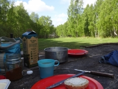 Frühstück im Wald. ʺErich der Weißeʺ leistete mir Gesellschaft