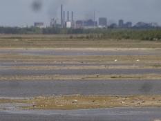 Der See Klydesöen von der Vogelbeobachtungshütte auf dem Deich aus gesehen