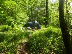 Mein Zelt inmitten der Wildnis an den Hängen des Knösen