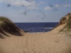 Schöner und menschenleerer Strand an der schwedischen Kattegatt-Küste
