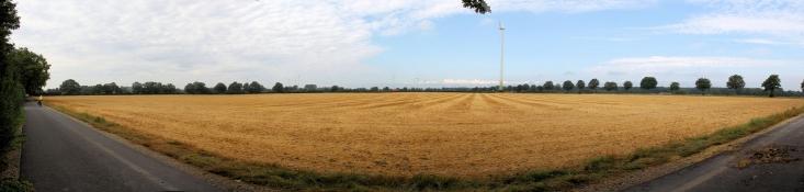 Landschaft nördlich von Sendenhorst