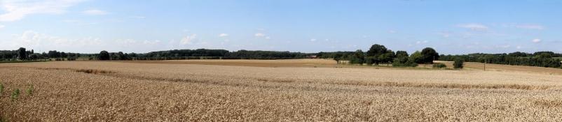 Landschaft bei Ahlen