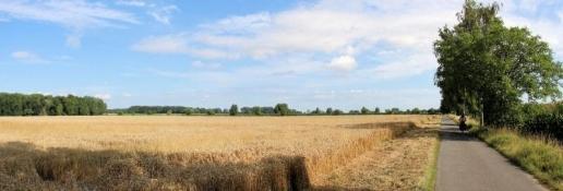 Landschaft bei Weslarn