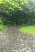 Kräftiger Regenschauer