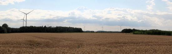 Landschaft bei Osterwick