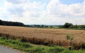 Landschaft bei Werne