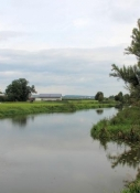 Wörnitz bei Munningen