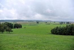Landschaft bei Larrieden