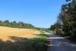 Aischtalradweg bei Diespeck
