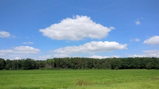 Landschaft bei Willersdorf