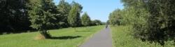 Auf dem Mainradweg bei Schweinfurt