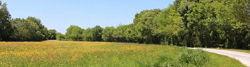 Loire-Radweg zwischen Ancenis und Le Marillais