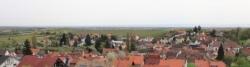Weindorf in der Südpfalz