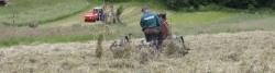 Landwirtschaft im Poprad-Tal