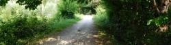Radweg bei Trepalade