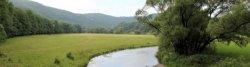 Im Edertal zwischen Bateenberg und Dodenau